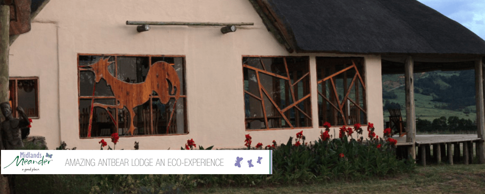 Amazing Antbear Lodge An Eco-Experience
