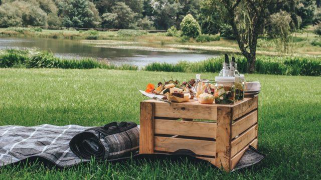 Winter picnics @ Fordoun