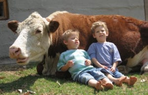 little boys chilling with a cow